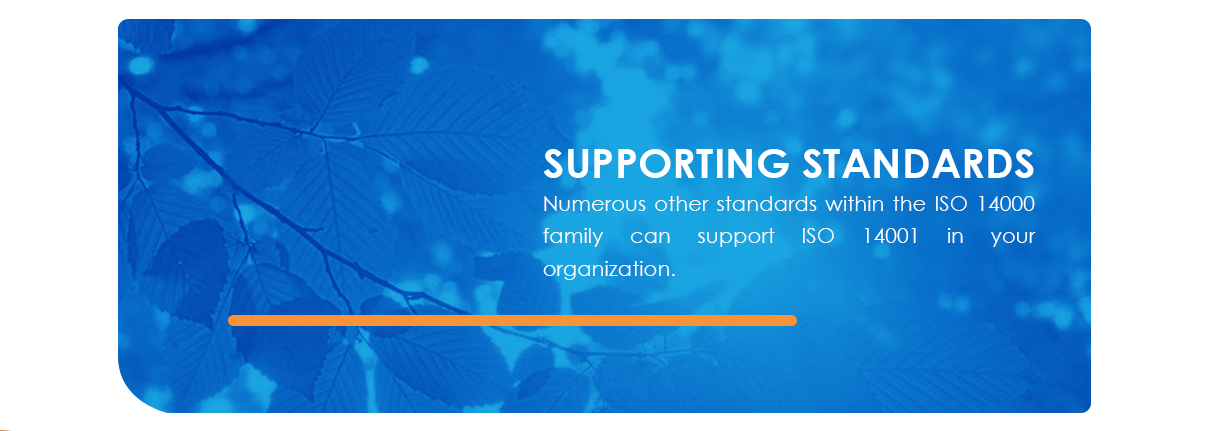 supporting standards to iso 14001